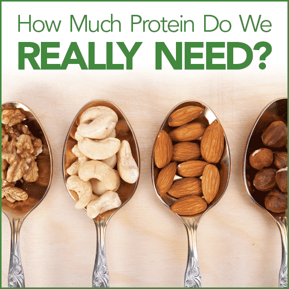 Find out how much protein you really need and the best way to get it.