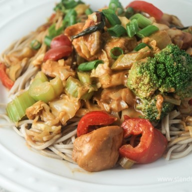 Healthy Peanut Noodles with Chicken and vegetables on top