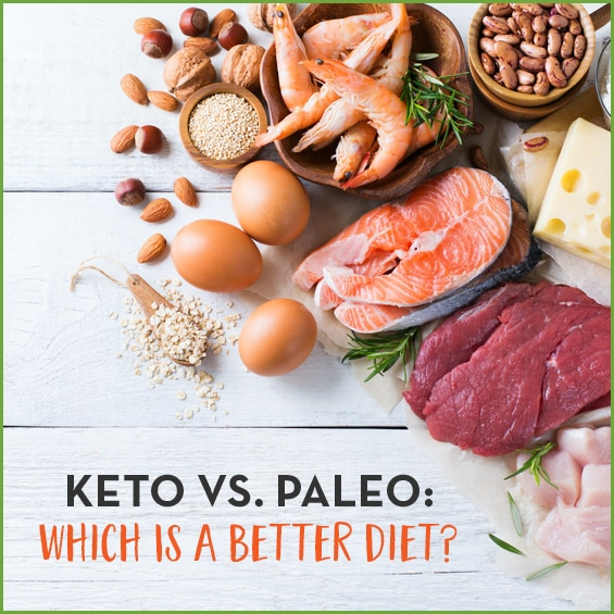 Healthy fats vs. healthy protein: which is better?