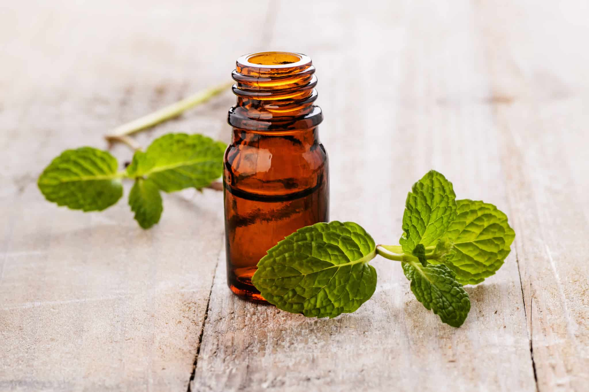 Brown bottle of peppermint oil with fresh mint leaves on table